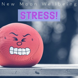 Stress: what it is, how it shows up in our bodies and lives, and how to manage and cope