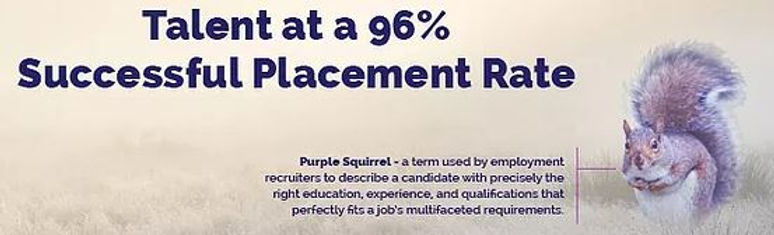 96 Talents Purple Squirrel