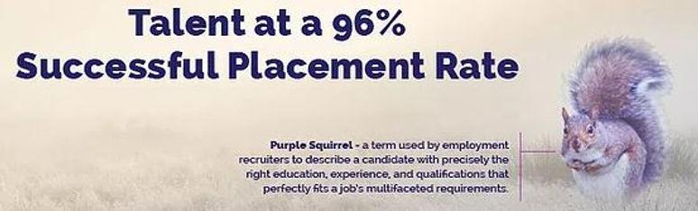 96 Talents Purple Squirrel