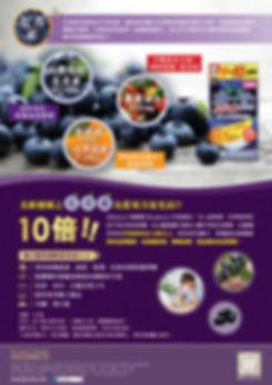 護眼藍莓素_leaflet_output-02.jpg