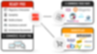 infografica-ready-pro-servizi-3.png