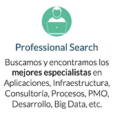 Professional Search