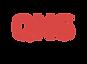 QNS logo.png