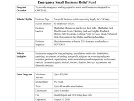 Emergency Small Business Relief Loan Fund