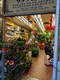 Soy Bean Chan Flower Shop 1