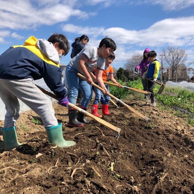 仲間とつながり、生きる力を育む 『コドモ農業大学』 2021年度 春夏メンバー大募集!