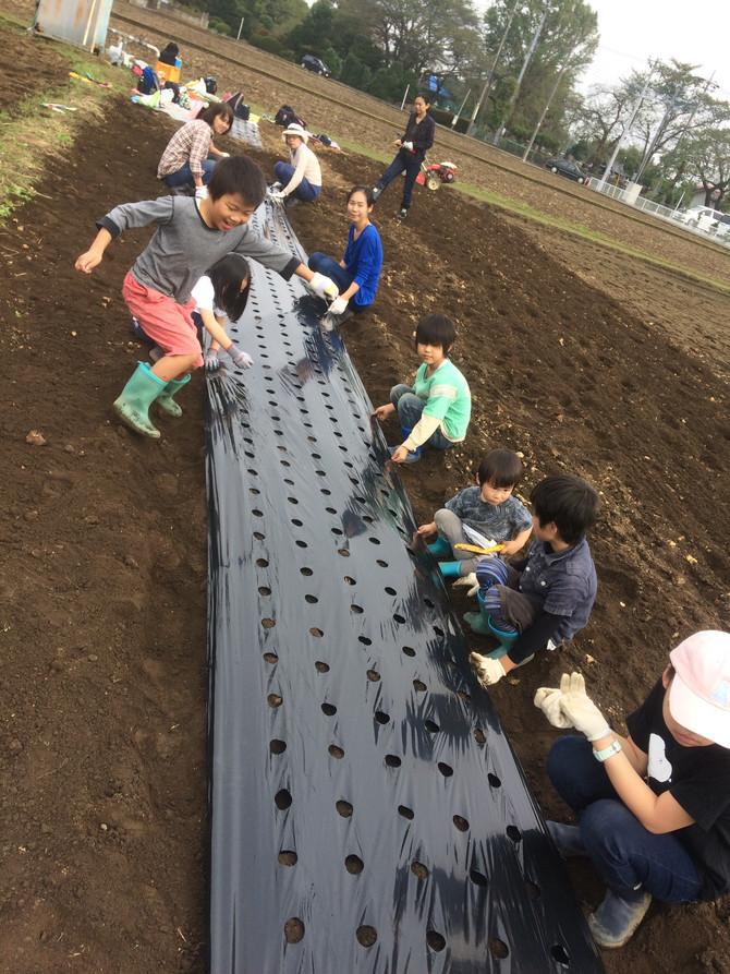 まちの先生プロジェクト「食を農業から学んでみよう」スタート