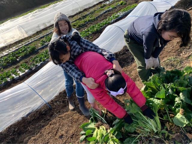 【2020年初めての農業プロジェクト】