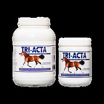 TRI-ACTA-equine.png