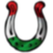 logo ungheria news.jpg