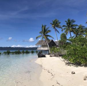 Beautiful beach with bamboo hut and palmtrees in Raja Ampat