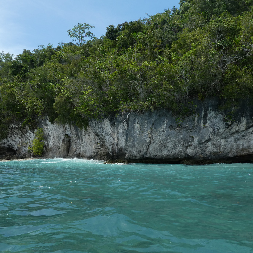 Beautiful ocean and snorkeling in Raja Ampat
