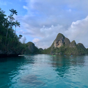Beautiful white beach with palm trees and mountains in Raja Ampat