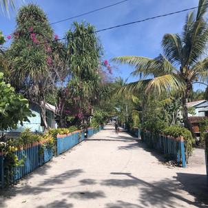 Beautiful street in small village on island in Raja Ampat