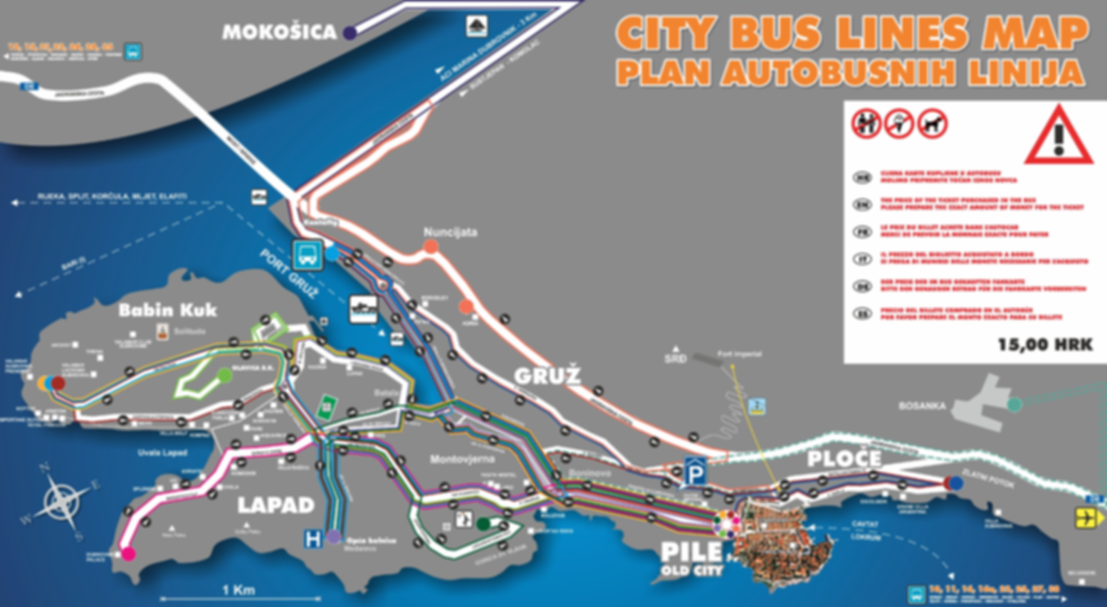 Map of Dubrovnik Bus Stations and Lines