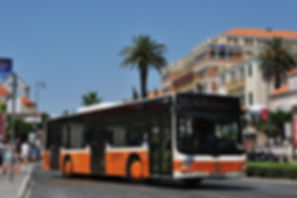 Dubrovnik local bus