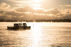 Toronto Early Morning Mist - Boat