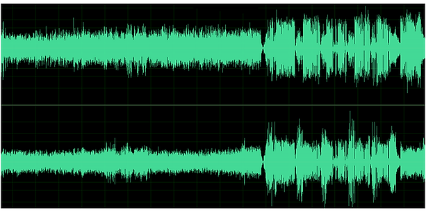 WAV_2CH_AUDITION_edited_edited.png