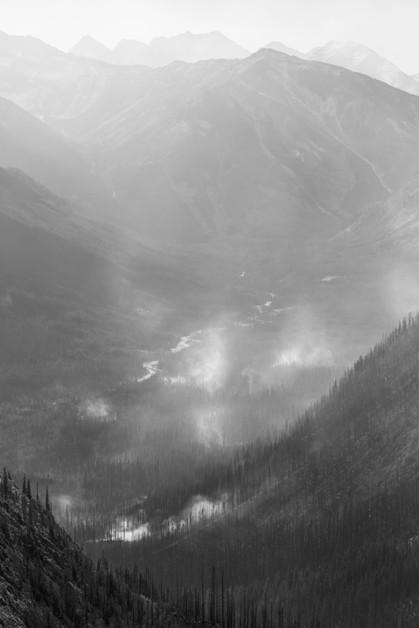 Forest Fires Black & White