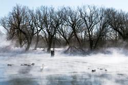 Toronto Islands - Winter Mist