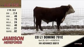 CO L1 DOMINO 791E