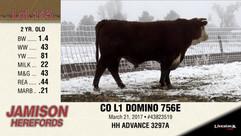 CO L1 DOMINO 756E
