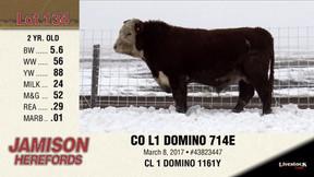 CO L1 DOMINO 714E
