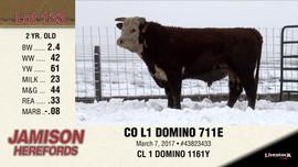 CO L1 DOMINO 711E