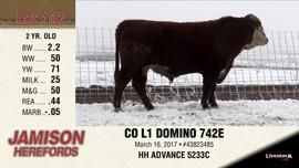 CO L1 DOMINO 742E