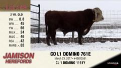 CO L1 DOMINO 761E