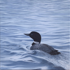 Loon In The Waves
