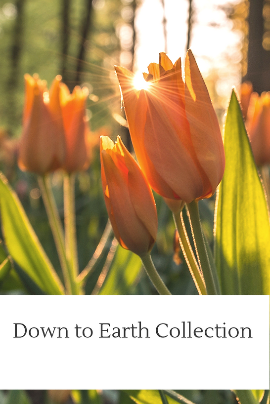 Spring Down to Earth Collection.png