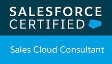 Salesforce Sales Cloud Consultant Badge