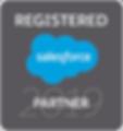 Salesforce Registered Partner Badge