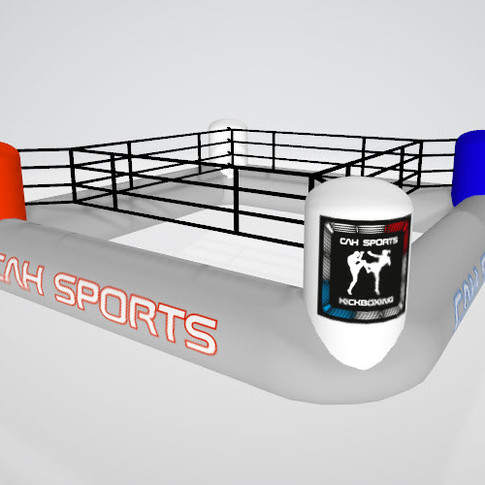CAH Sports Boxingring.jpg