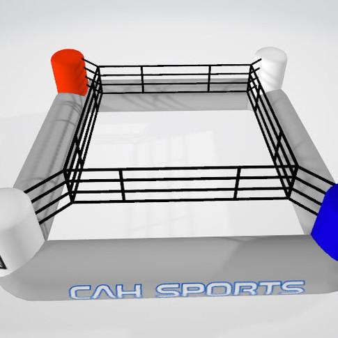 CAH Sports Boxingring 4.jpg