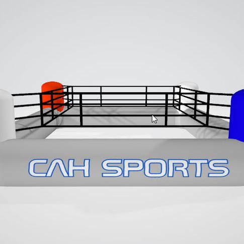 CAH Sports Boxingring 1.jpg