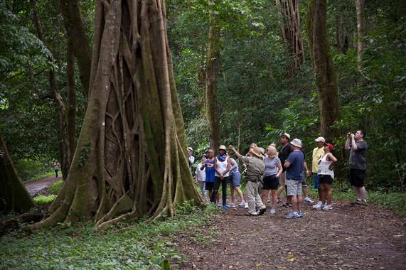 Tours from Tamarindo