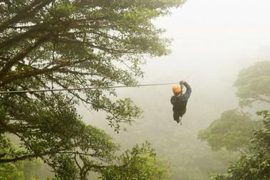 Monteverde Canopy.jpg