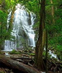 Rincon de la Vieja National Park.jpg