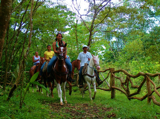 Horse Back Riding Blue River.JPG