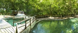 Buena Vista Lodge.jpg