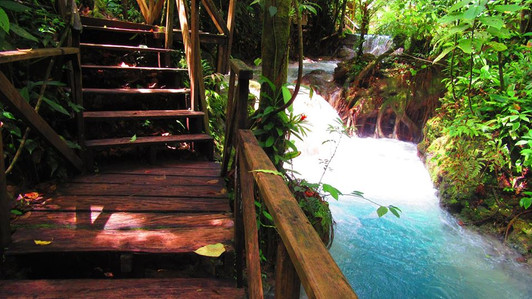 Private Rainforest Tour Guanacaste