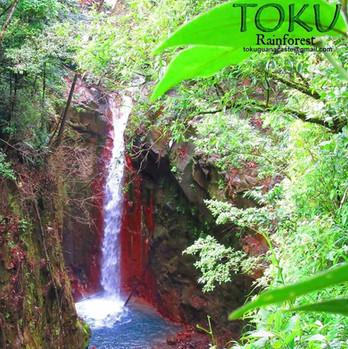 Waterfalls Tours Guanacaste