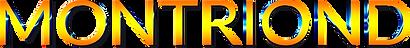TexteMontriondSite2021.png