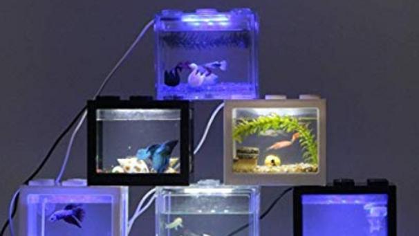 水槽セット USB接続 水槽 水槽 セット 静音 ミニ水槽 静かなメダカ飼育セット LEDライトはランダムカラー (LEDライトあり) (水槽外ーブラック)