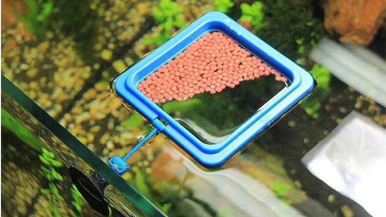 魚餌皿 拡散防止 定点給餌 上浮性 吸盤付 2個