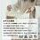 Thumbnail: 布団カバーセット おしゃれ 4点セット ダブル 掛け布団カバー シンプル ベッドカバー 枕カバー ボックスシーツ マットレスカバー ベッド シーツ モダン かわ