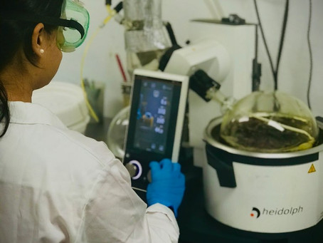 Why Does CBD Extraction Methodology Matter?