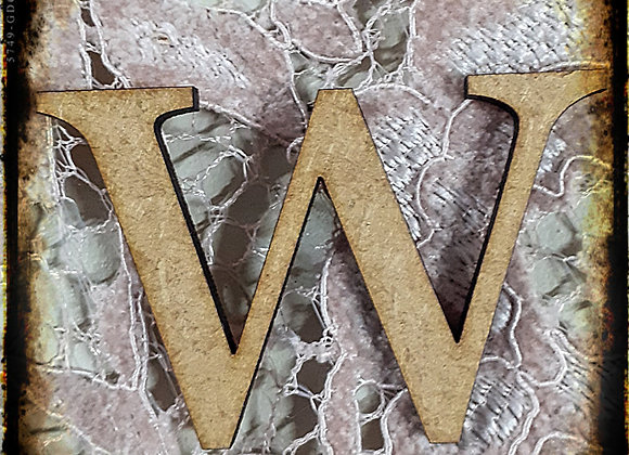 W.SMALL LETTER
